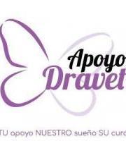 Mercadillo solidario Apoyodravet