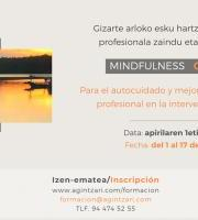 FORMACIÓN Mindfulness ONLINE profesionales / Mindfulness ONLINE profesionalentzako