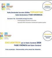 Kalte Zerebralari Buruzko Topaketak: Fase Crónica del Daño Cerebral