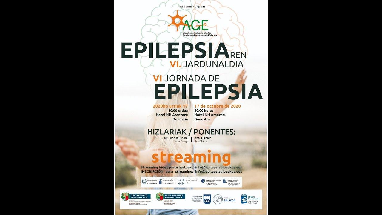 Epilepsiaren VI.Jardunaldia /VI Jornada de Epilepsia